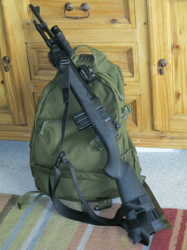 Tactical Mini 14